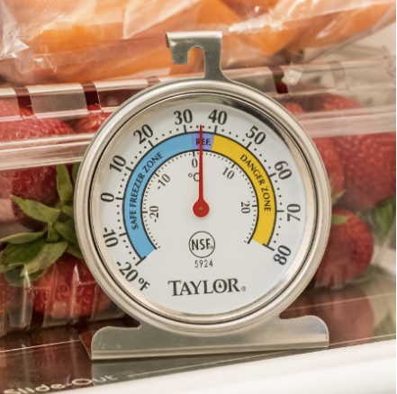 Taylor Food Service Thermometer Freezer Refrigerator